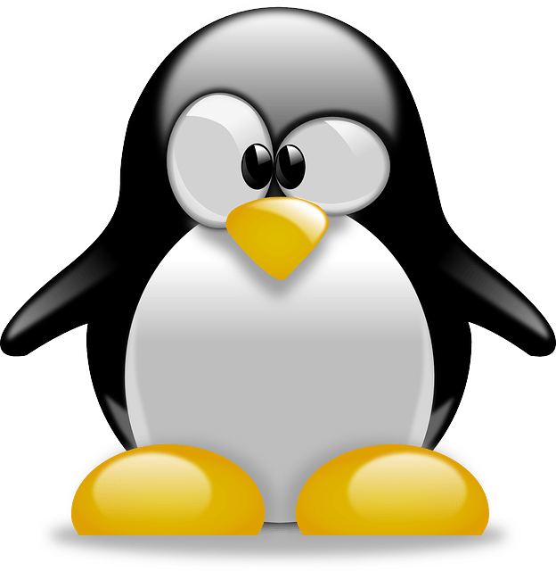 How to install Linux on a Chromebook?